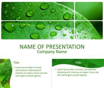 Green Leaf With Drops PowerPoint Template