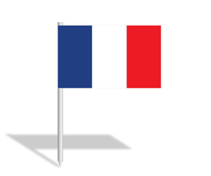 French Flag PowerPoint Slide