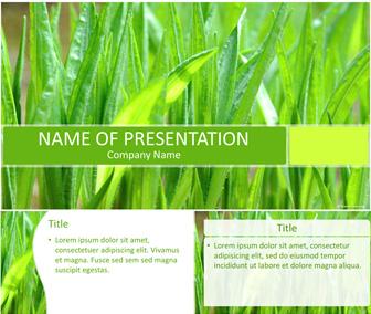 Green Grass PowerPoint Template - Templateswise.com