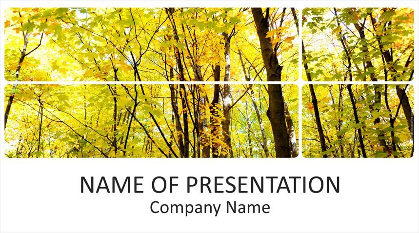 forest powerpoint template templateswise com