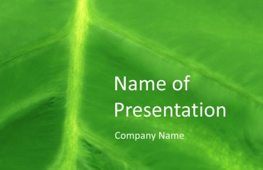 Leaf Close Up PowerPoint Template